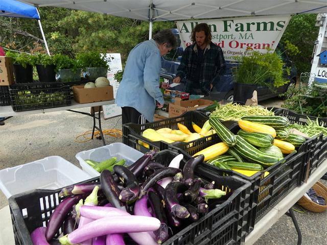 Cape Cod Farmers Markets, Farmers Markets On Cape Cod