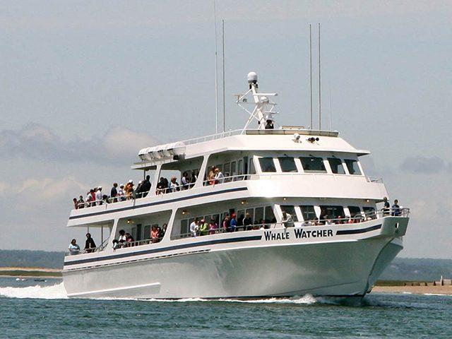 Cape Cod Vacations, Cape Cod Vacation Rentals, Cape Cod MA Vacation Rentals